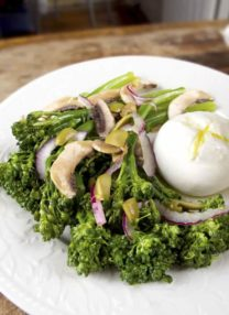 broccolini salad with burrata cheese
