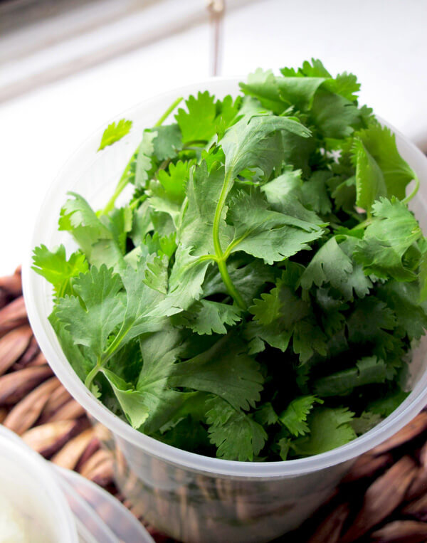 cilantro stalks in bowl