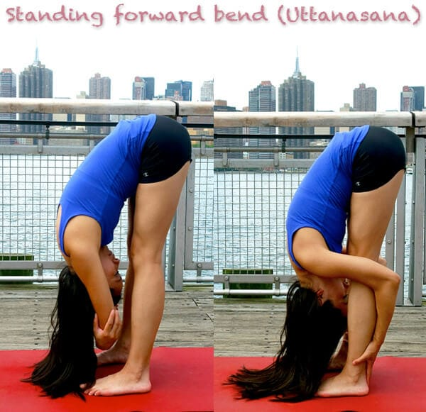 standing forward bend