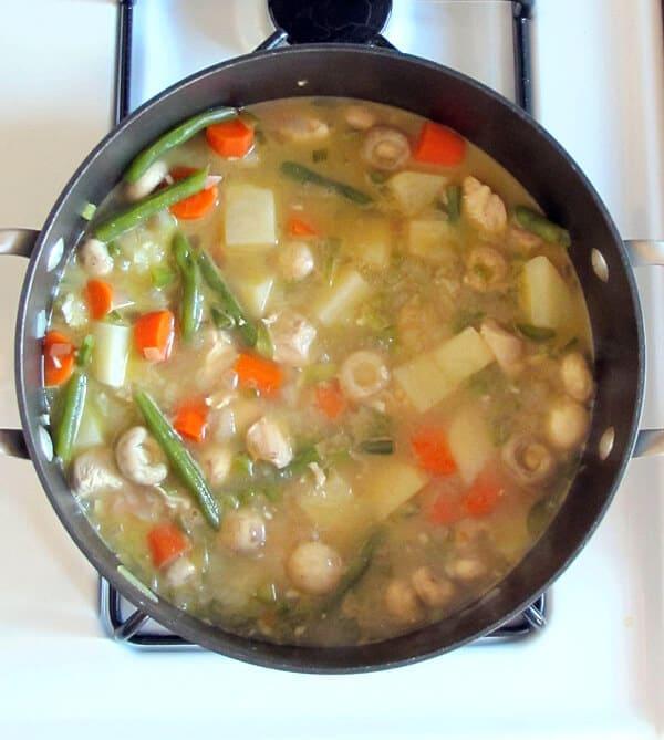 veggie chicken stew