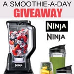 Ninja smoothie blender (CLOSED)