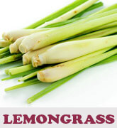 lemongrass-thmb