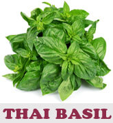 thai-basil-thmb