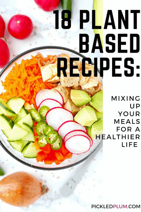 Plant Based Food Diet Recipes