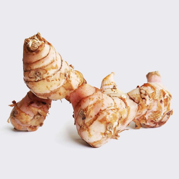 galangal thai ingredient