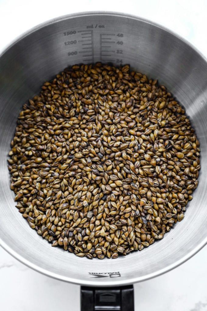 barley grains to make mugicha and boricha