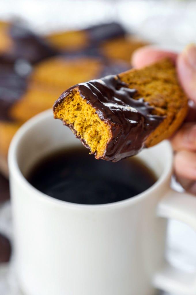 chocolate pumpkin biscotti